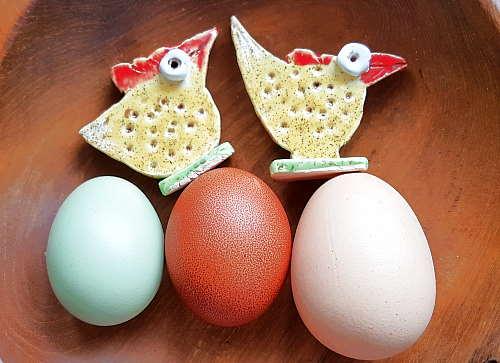 Eierfarben nach Hühnerrasse